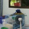 icu-nursery-l2.jpg